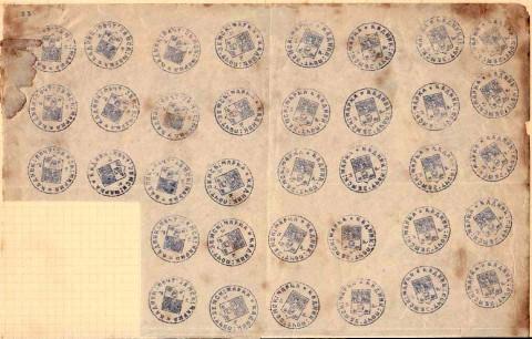 1874. Значительная часть листа Кадников №3